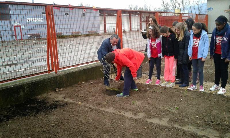 Inauguración Huerto Escolar Ecologico Principe de España de Miranda de Ebro - Plantacion Lilo Alcalde Fernando Campo