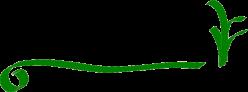 Ekoburuz: Asociación Ecocultural